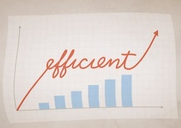 Natural_capital_efficiency