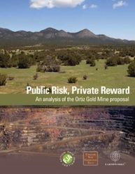 Public_risk_private_reward_cover_250_324_s