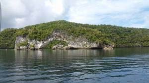 Jll_island_image