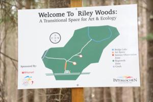 Signage_entering_forest