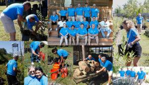 Xylem-volunteers-300x172