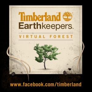 social responsibility and timberland essay Betsy blaisdell has spent her timberland career working in sustainability issues, helping to usher the company to a powerhouse role in corporate social responsibility circles.