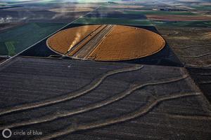 ©brian_lehmann_cob_aerial_corn_harvest_0421