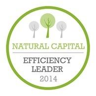 Natural_capital_efficiency_leader_-_badge