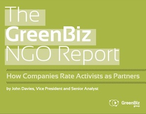 Ngo_report_cover