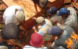 Brus_laguana_workers_400x250