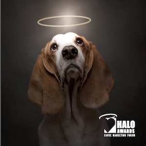 Halo_dog_square_with_logo_smaller