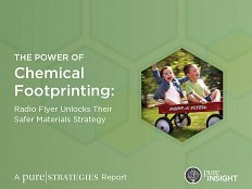 Pure-strategies-the-power-of-chemical-footprinting-2017-w232h174