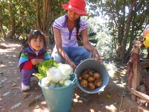 Farmer-queretaro-organic-vegetables-min
