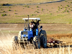 global communities and cargill partner to facilitate agricultural