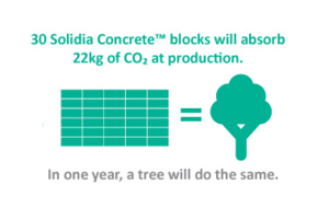 Solidia_blocks_and_tree