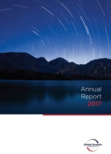 Annual_report17_gs