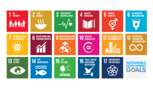 Catalyzing Action on the SDGs Through Collaboration