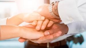 Teamwork-deal612377-pnhpwp-405_web