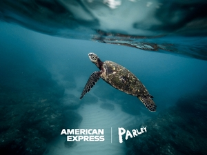 Back_our_oceans_turtle