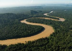 Photo_13_-_kinabatangan_river