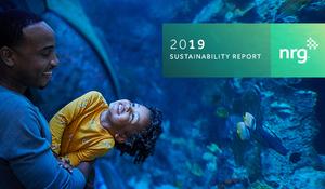 2019-nrg_sustainability-report_600x350