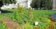 Denver-parks-colorado-gardens