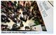 Wef_davos_2012