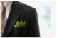 Sustainability_professional