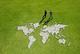 Green-handshake-grass-map-csrlive