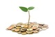 Plant-growing-out-of-coins